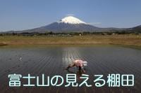 スライドショー『富士山の見える棚田』